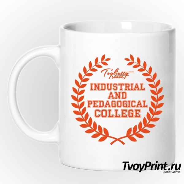 Кружка колледжей: ТиПК