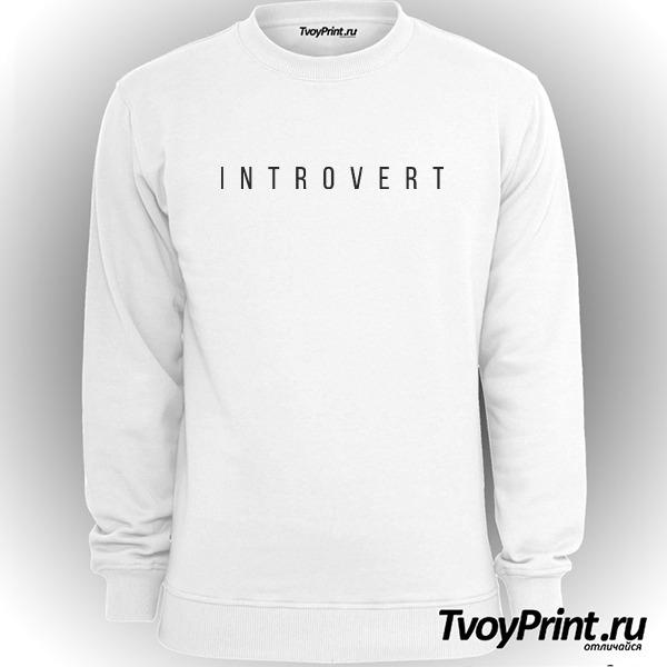 Свитшот интроверт